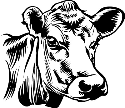 Benefits of Raw Milk | Raw Milk Marathon
