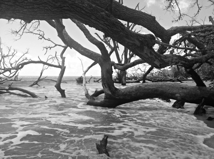 Hunting Island, SC