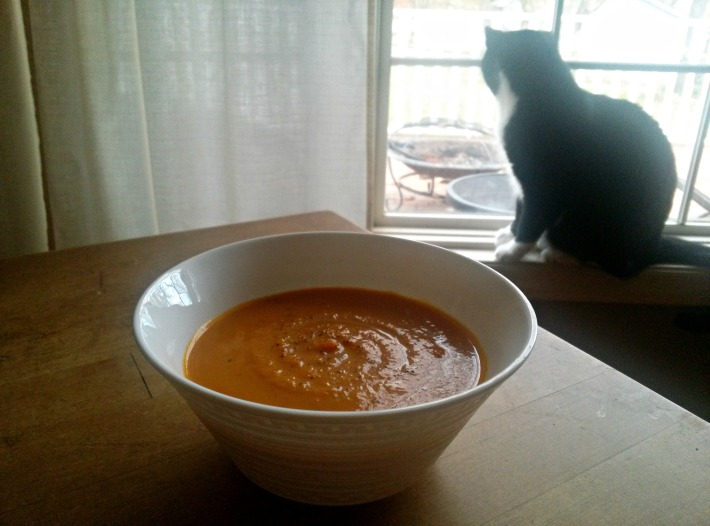 cat and soup2