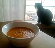 cat and soup3