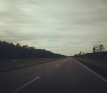 the road1
